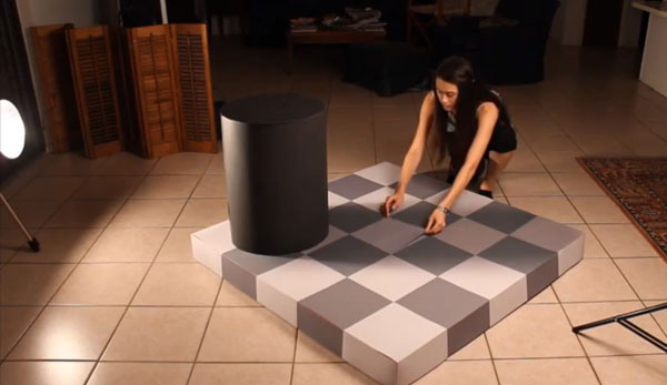 Checkerboard Illusion Makes You See Two Different Colors