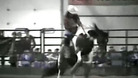 World\'s Most Amazing Videos: Barrel Race Bruiser